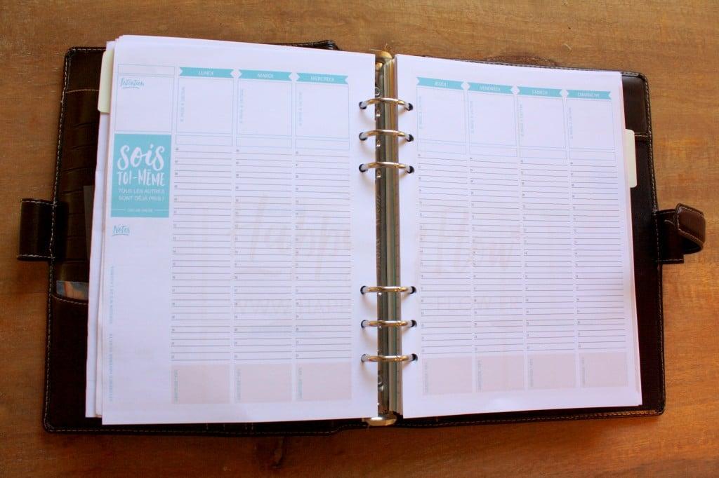 PDF gratuit pour tester la version d'un agenda positif et inspirant. Note-y vos rêves, vos projets, vos objectifs mais aussi vos gratitudes de la journée. Plus qu'un agenda, un compagnon de vie !
