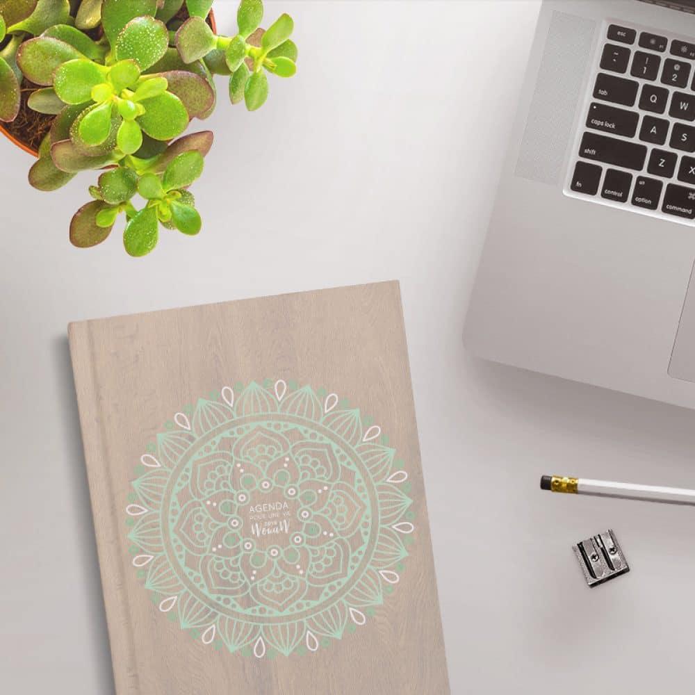 Dans cet agenda vous pouvez noter vos projets, fire un tableau de visualisation, noter vos objectifs, finir vos domaines de vie, inscrire vos gratitudes et faire le point sur les expériences vécues